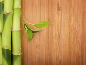 Bamboo Flooring image